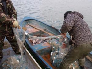 pescari-in-barci