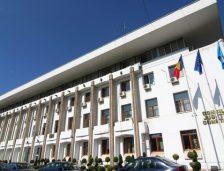 CJC caută firmă care să întrețină spațiile verzi din jurul clădirilor aflate în administrare