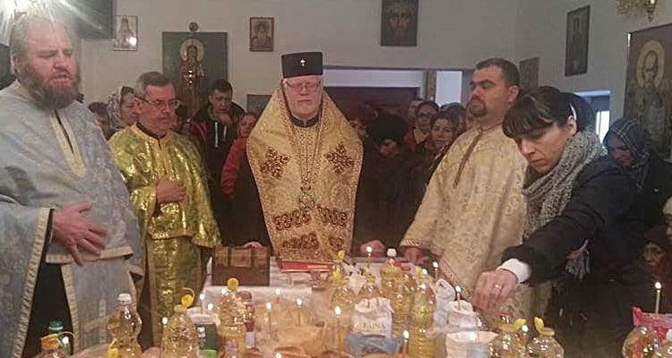 Antochi-si-Gurita
