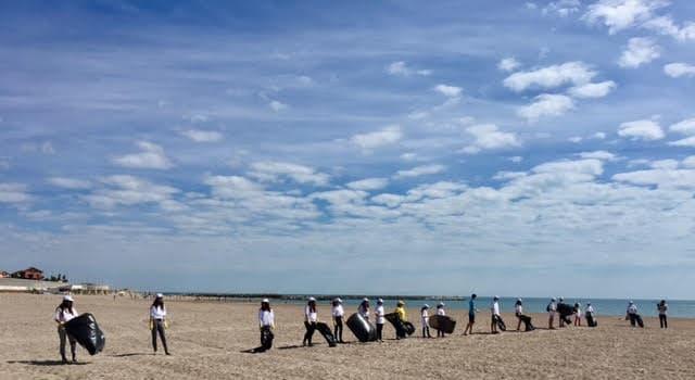 actiunea polaris pe plaja