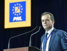 Planurile liberalilor pentru sesiunea parlamentară și învestirea Guvernului Dăncilă
