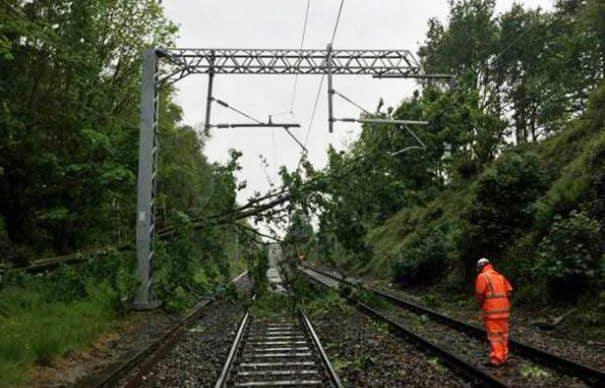 copac-cazut-pe-cale-ferata-465×390