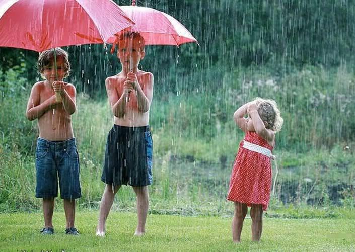 ploaie de vara2
