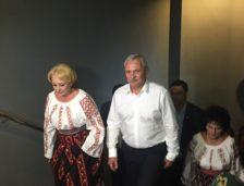 Viorica Dăncilă, propunerea PSD pentru funcția de premier. Dăncilă vine din… Teleorman!