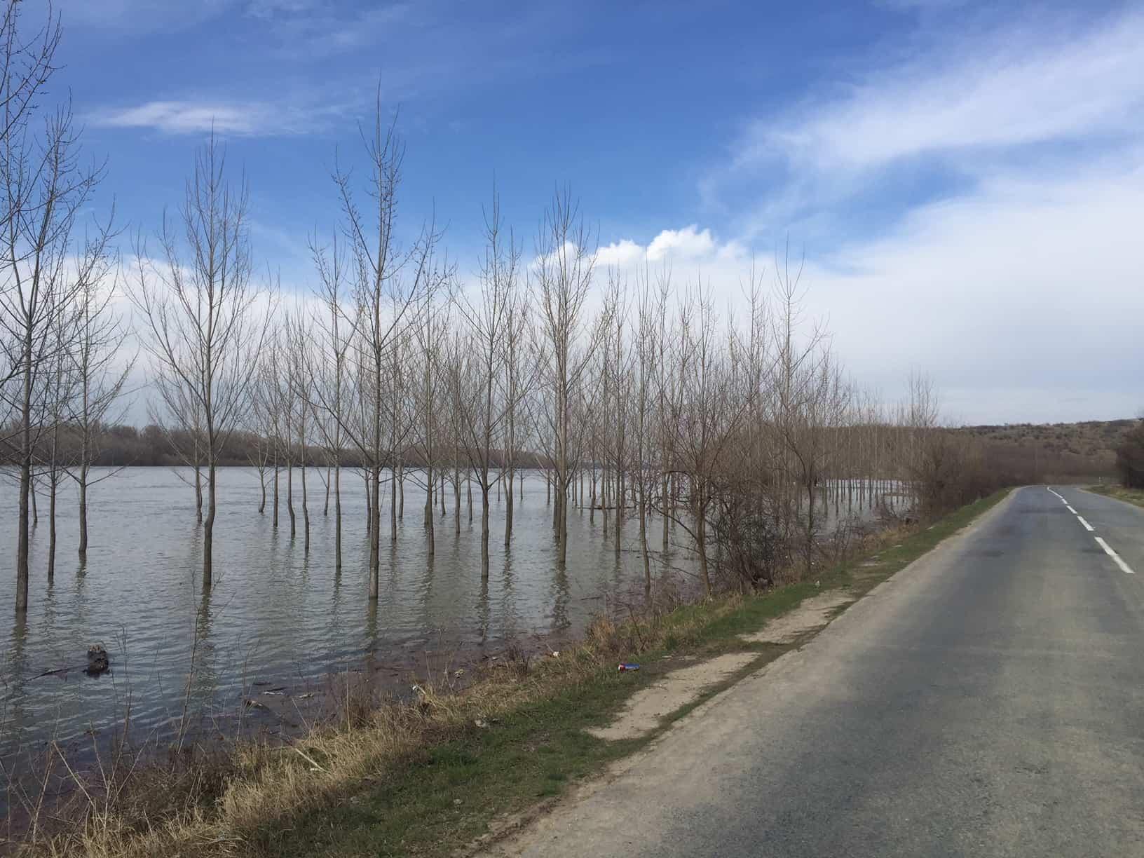 inundatii dunare rasova_5569