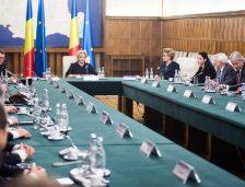 Ședință de Guvern. Ce proiecte propune premierului Dăncilă