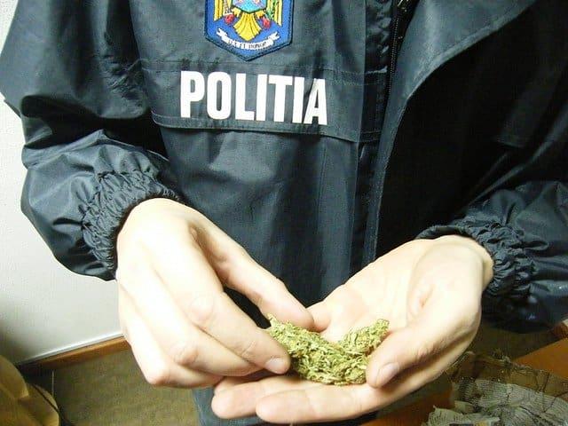 dosare penale trafic de droguri