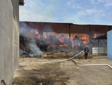 """(Video): Ce spune primarul din Horia, Gigel Sava despre incendiul de la ferma """"Sava Zootehnic"""" SRL"""
