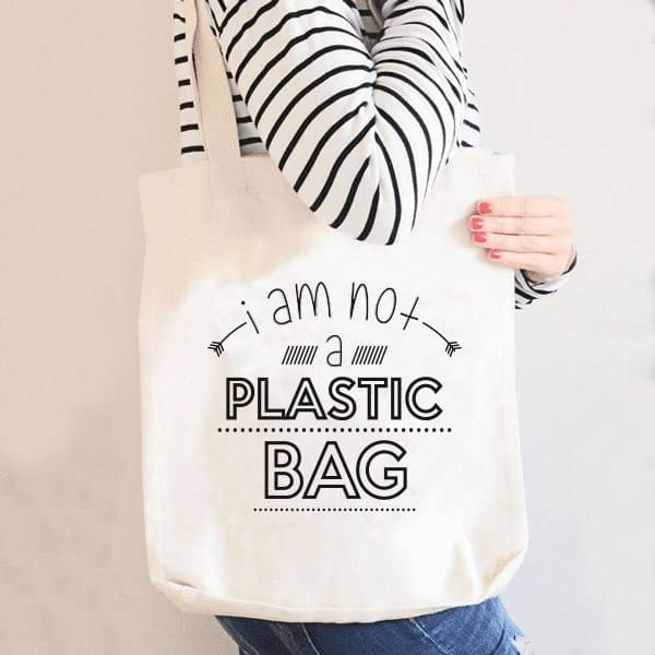 polaris-punga-de-plastic