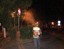 Primăria Constanța anunță că vor fi reluate acțiunile de dezinsecție