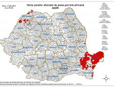 15 localități din județul Constanța, afectate de pesta porcină africană. Sunt confirmate deja 37 de focare! Vezi lista