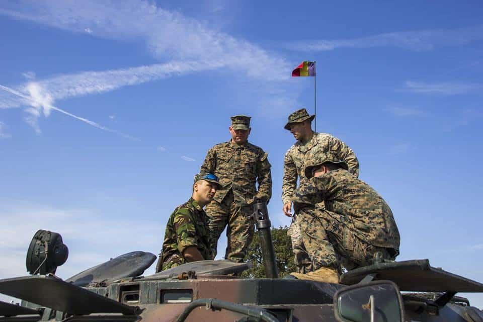 militari babadag4