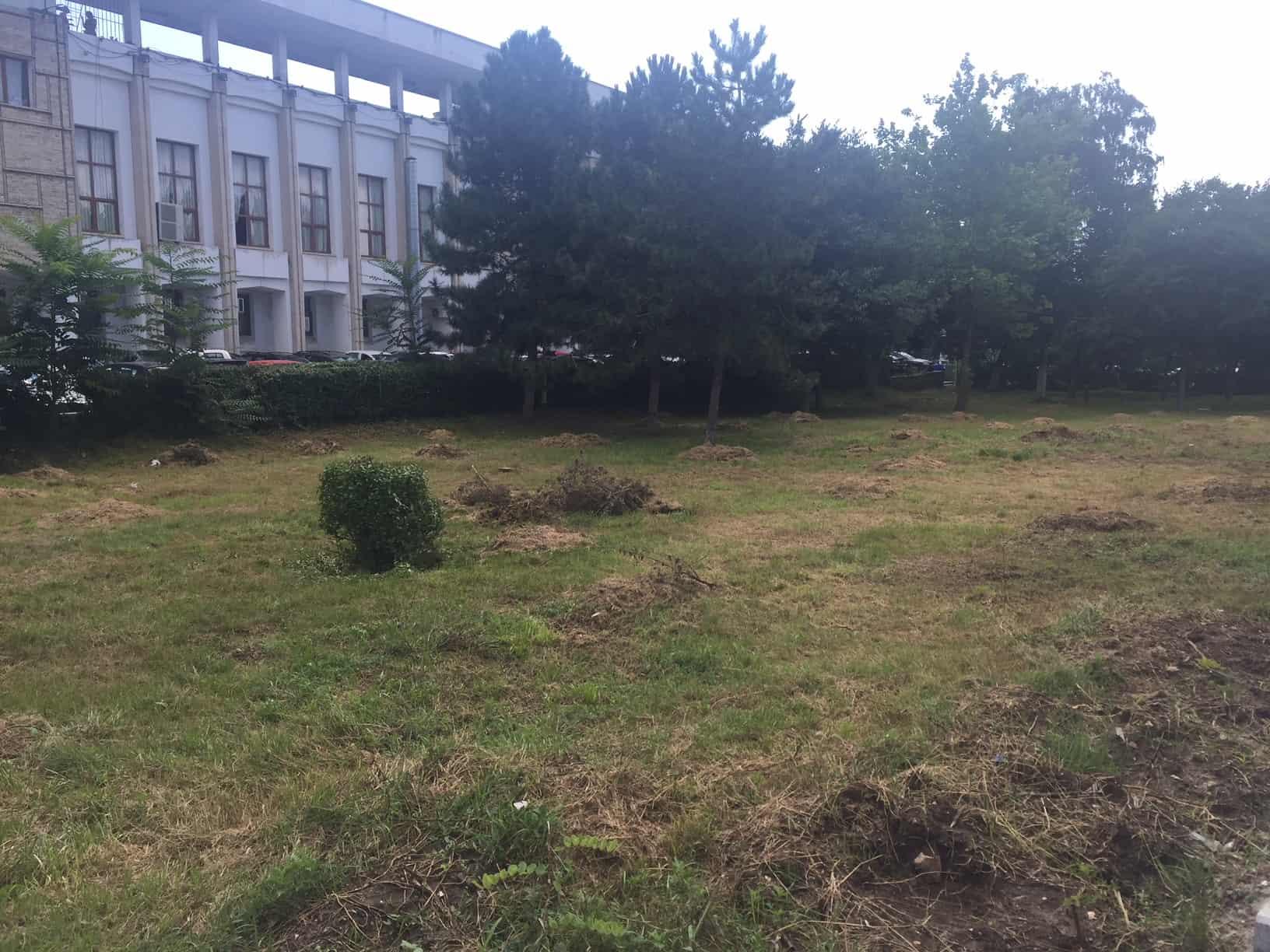 parc arheologic_9073