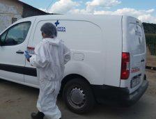 Începe uciderea porcilor în alte 8 localități din județul Constanța