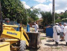 Raport DSV: 25 de localități din județul Constanța, afectate de pesta porcină africană