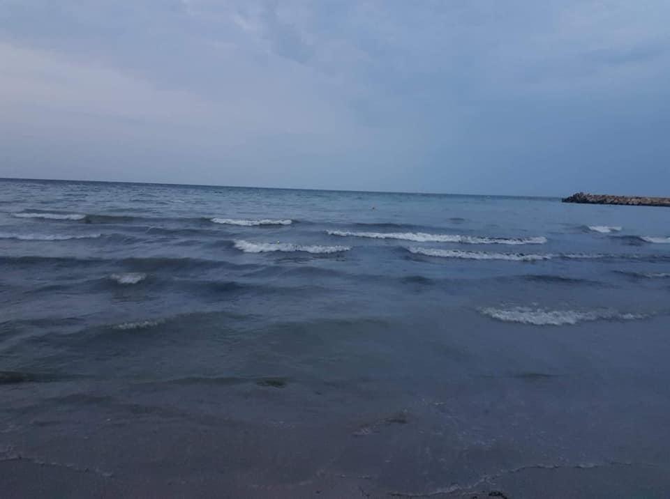 plaja poluata Mangalia3