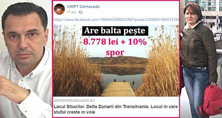 Liviu Negoita – Alina Sava – salarii Primaria Cernavoda