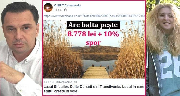 Liviu Negoita – salarii Primaria Cernavoda