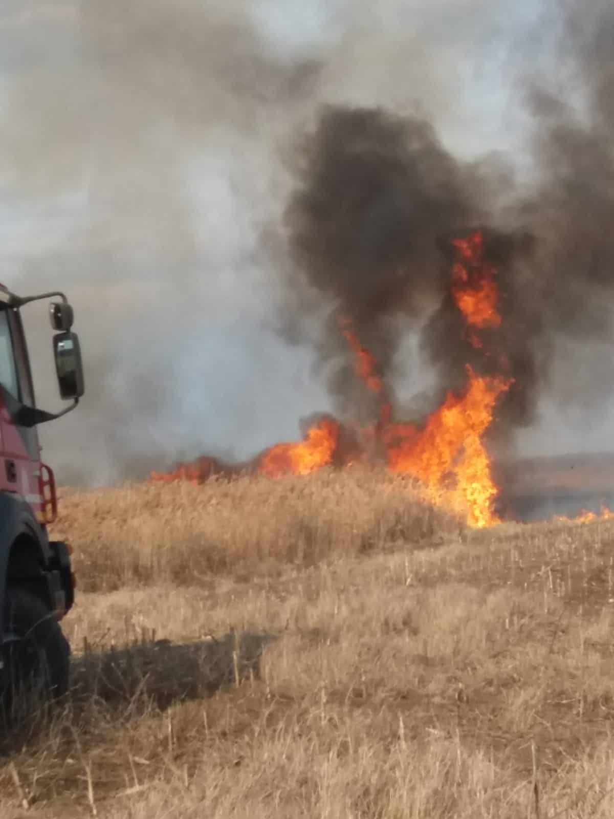 incendiu iarba uscata 2