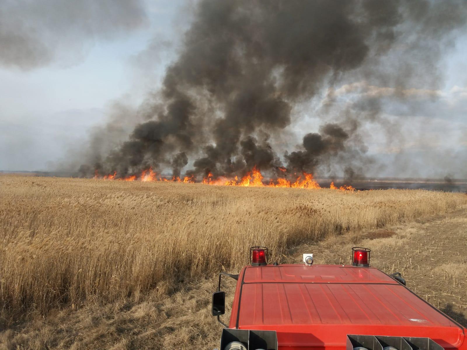 incendiu iarba uscata